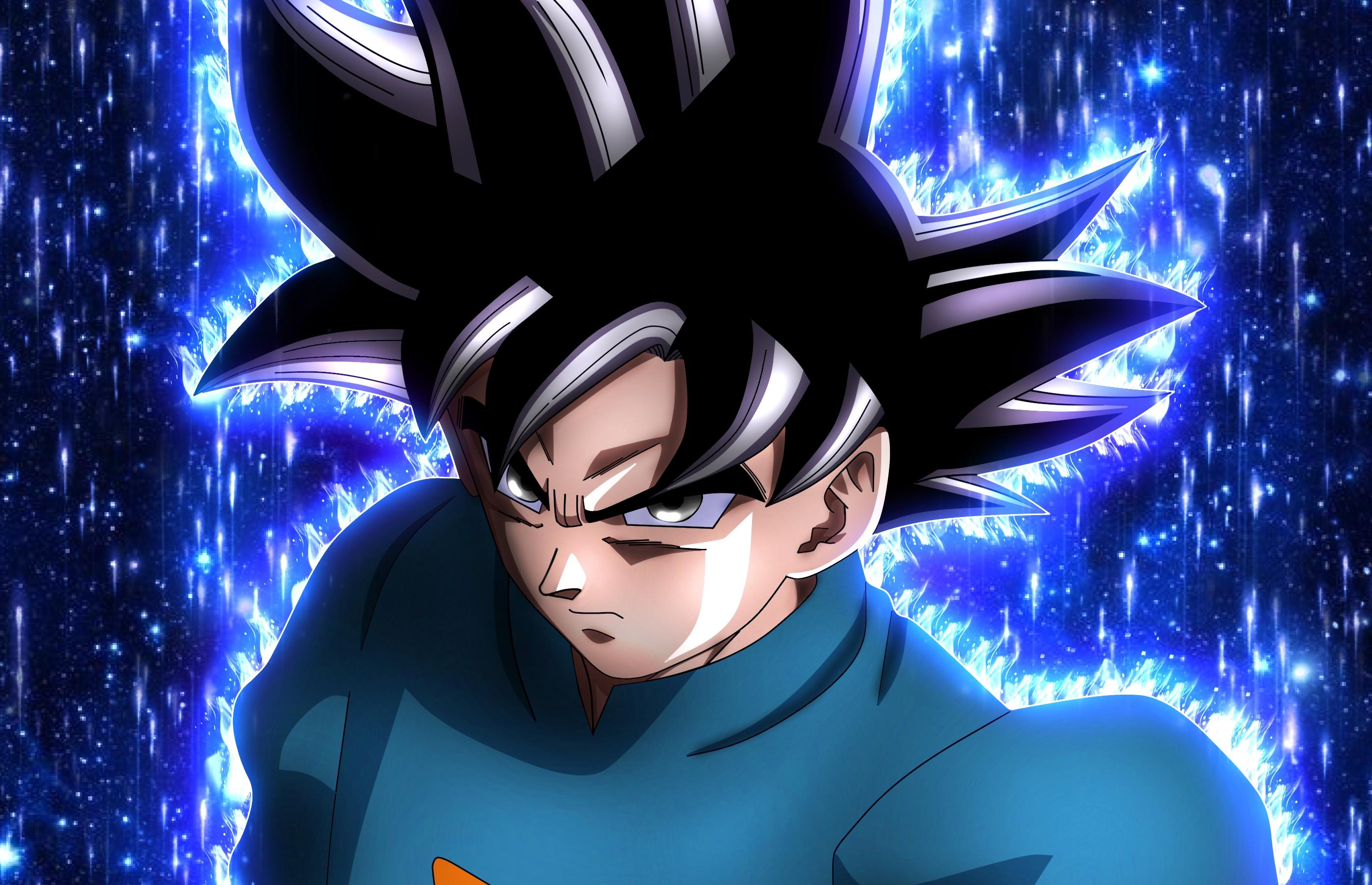Goku Grand Master Hd Wallpaper Background Image