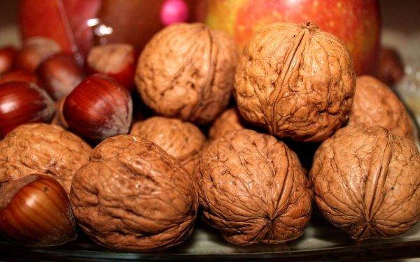 Food Nut Hazelnut Walnut HD Wallpaper | Background Image