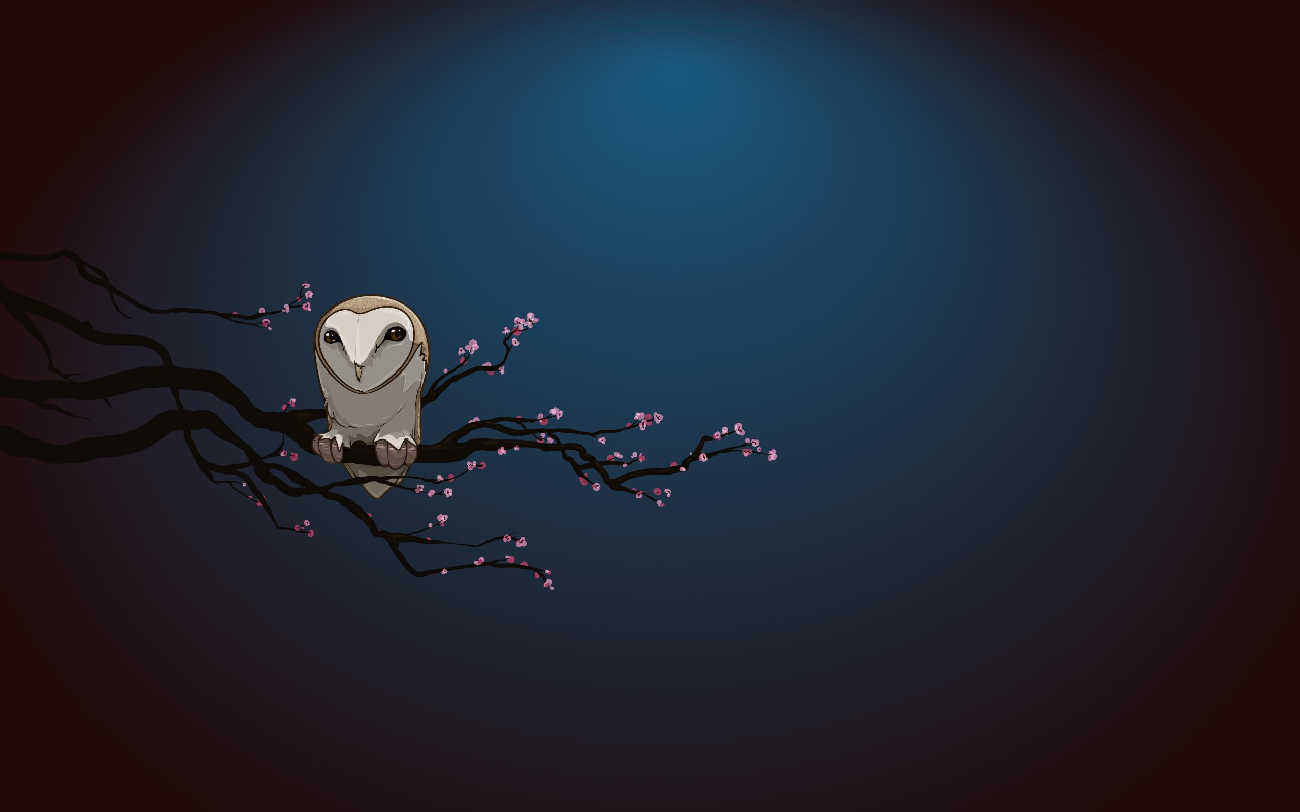 Popular Wallpaper Bird Minimalist - 104591  Best Photo Reference_146019.jpg
