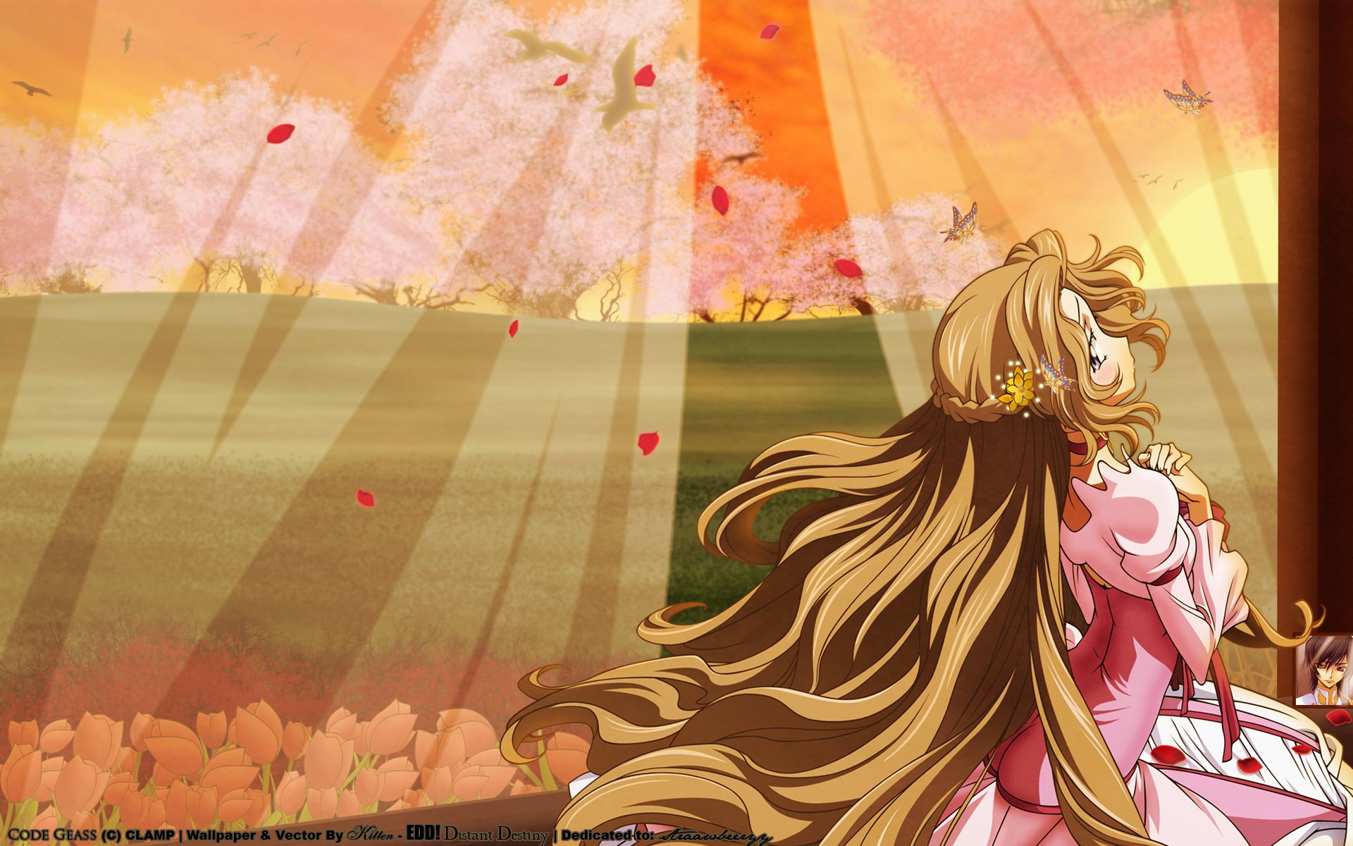 Wallpapers ID:105151