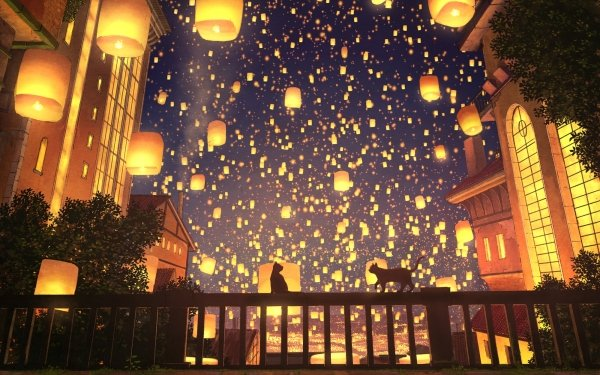Anime Original Cat City Night Light HD Wallpaper   Background Image