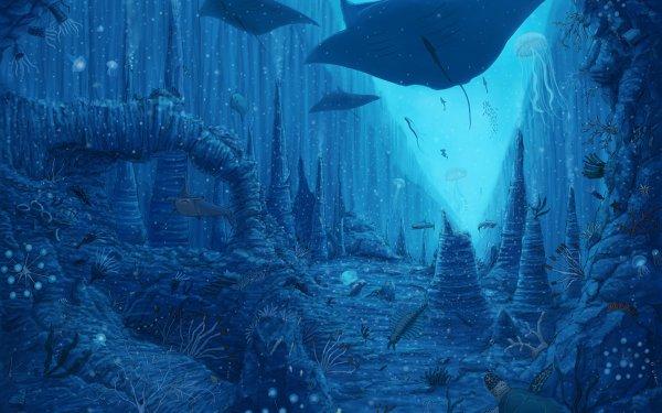 Anime Original Underwater Fish Shark Manta Ray HD Wallpaper   Background Image