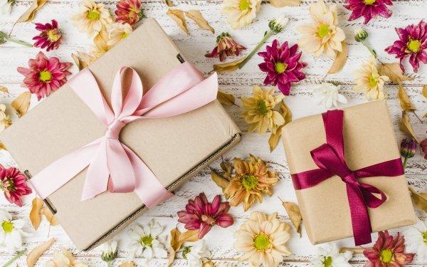 Misc Gift Flower Chrysanthemum HD Wallpaper   Background Image