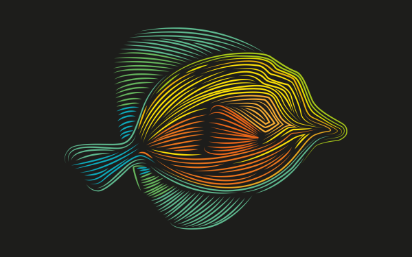 Animal Artistic Fish Colorful Colors Minimalist HD Wallpaper | Background Image
