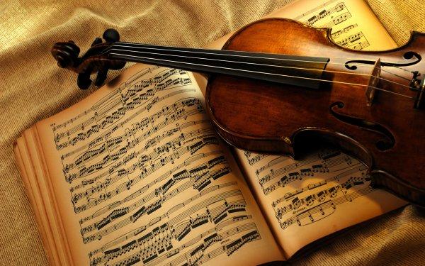Artistic Music Violin Instrument Still Life HD Wallpaper | Background Image