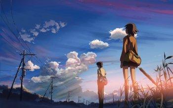 4021 Anime 5 Centimeters Per Second Byosoku 5 cm wall Poster Scroll