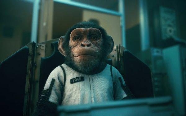 TV Show The Umbrella Academy Monkey Chimpanzee HD Wallpaper   Background Image
