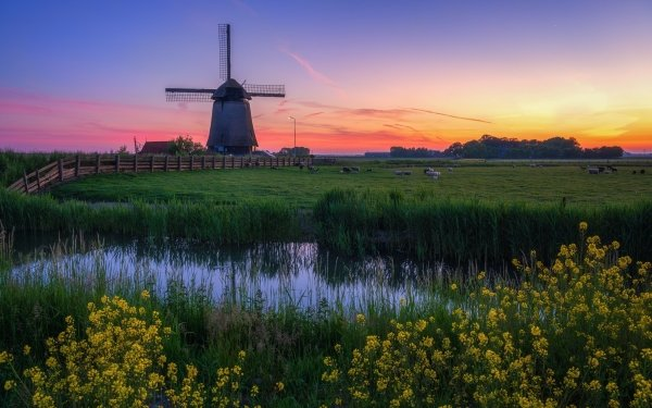 Man Made Windmill Buildings Field HD Wallpaper | Background Image