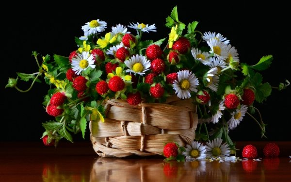 Food Still Life Flower Berry Bouquet Strawberry Basket Chamomile HD Wallpaper   Background Image