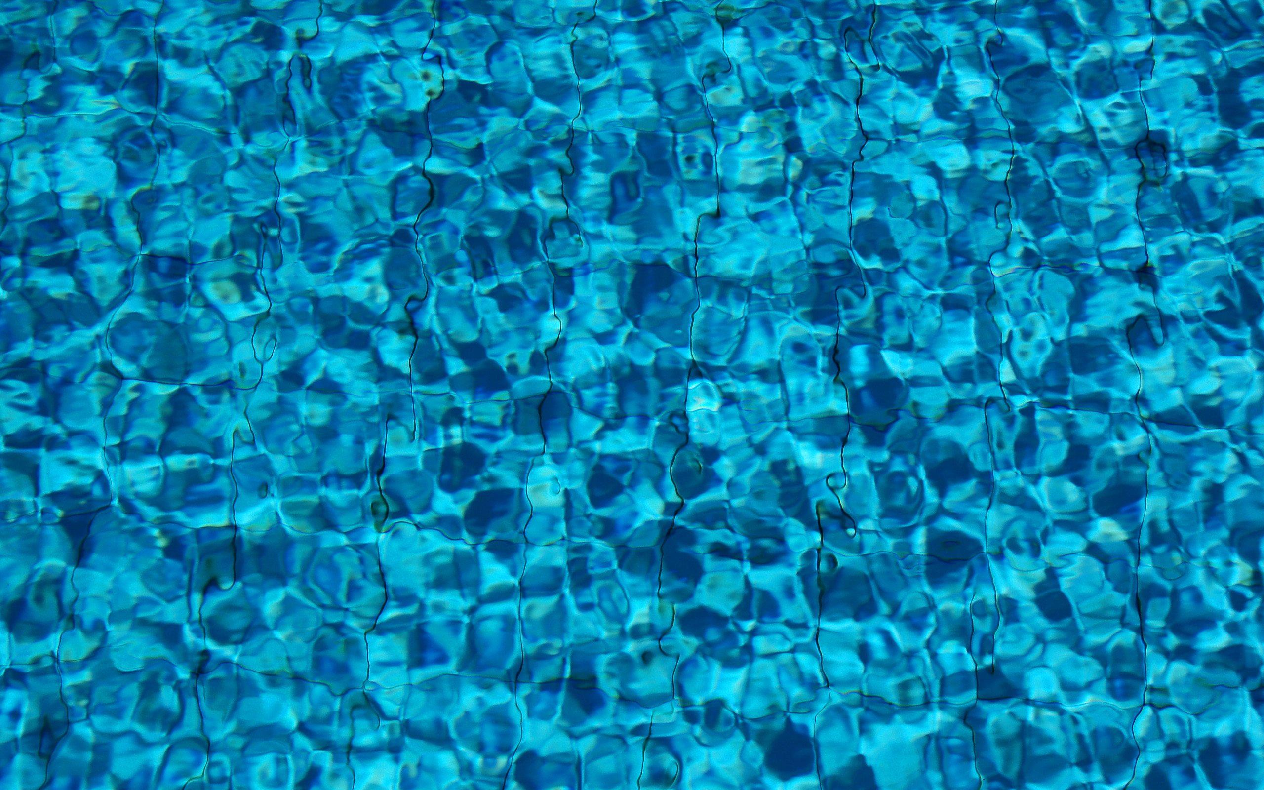 Water full hd wallpaper and background image 2560x1600 - Aquatic wallpaper ...