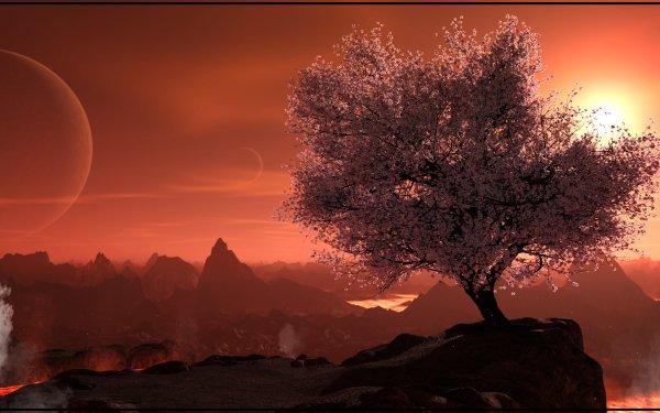 Sci Fi Landscape Tree Sakura Rock HD Wallpaper | Background Image