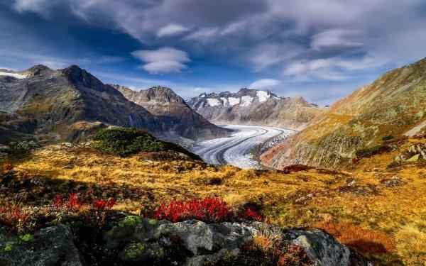 Earth Alps Mountain Mountains Switzerland Alps Flower Mountain Glacier HD Wallpaper   Background Image