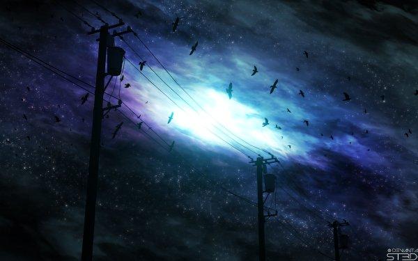 Anime Original Night Sky Bird Power Line HD Wallpaper | Background Image