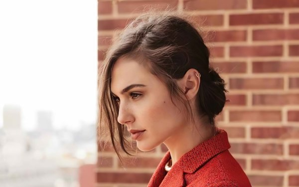 Celebrity Gal Gadot Actresses Israel Actress Face Profile HD Wallpaper | Background Image