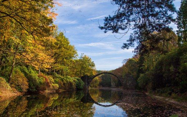 Man Made Devil's Bridge Rakotzbrücke Azalea and Rhododendron Park Fall HD Wallpaper | Background Image