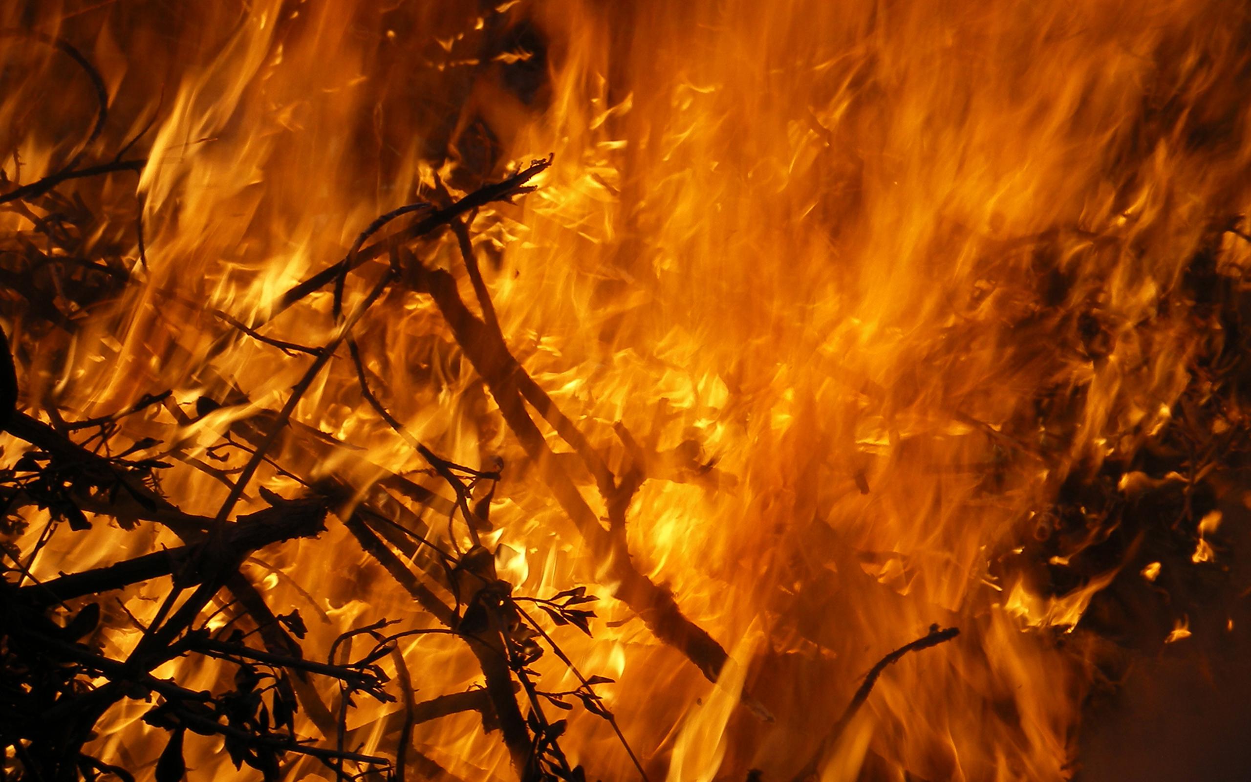 Fire Battleground Full Hd Wallpaper And Hintergrund: Feuer Full HD Wallpaper And Hintergrund