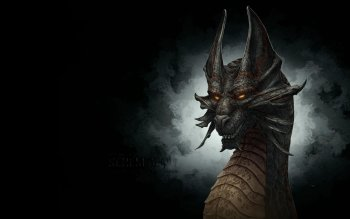 Fantasy - Drachen Wallpapers and Backgrounds ID : 117053