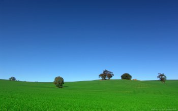 Earth - Field Wallpapers and Backgrounds ID : 118041