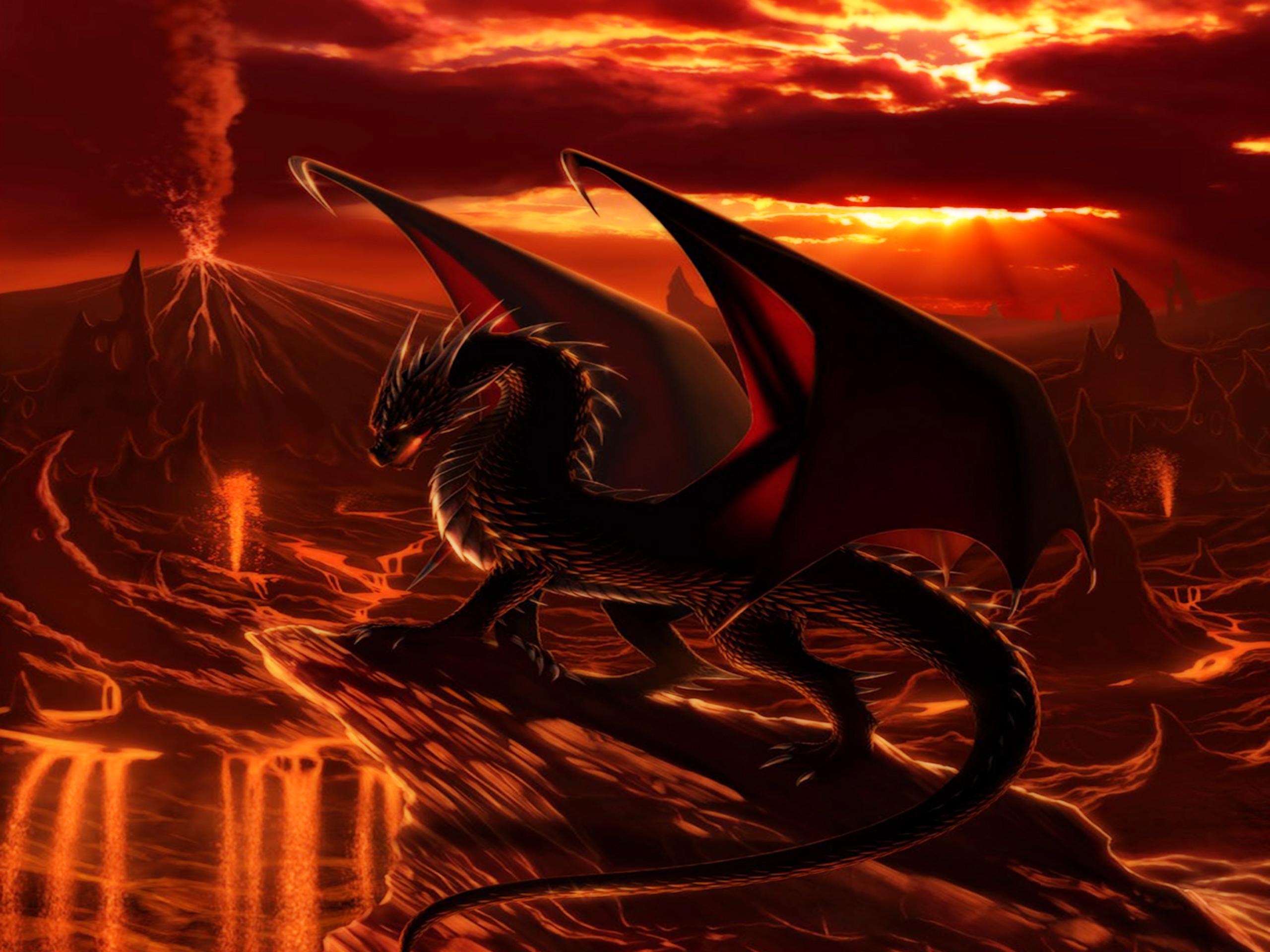 Hd wallpaper dragon - Hd Wallpaper Dragon 55