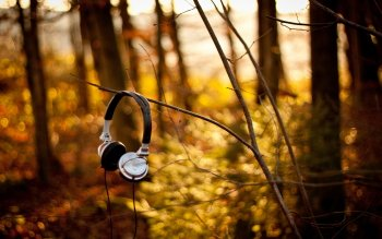 Music - Headphones Wallpapers and Backgrounds ID : 123511