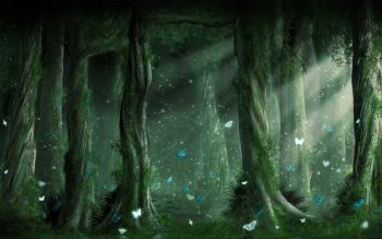 Fantasy - Forest Wallpapers and Backgrounds ID : 129281