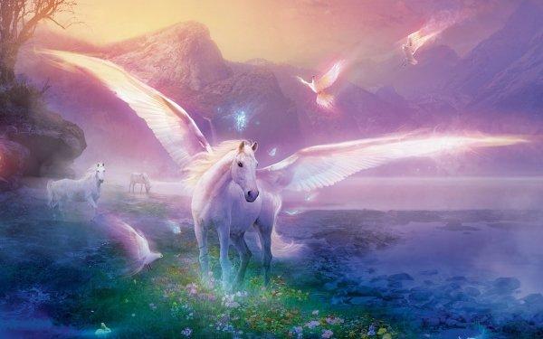 Fantaisie Pégase Animaux Fantastique Nature Fond d'écran HD | Image