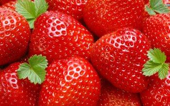 Alimento - Strawberry Wallpapers and Backgrounds ID : 143163