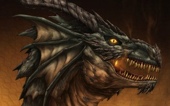 Fantasy - Dragon Wallpapers and Backgrounds ID : 146463
