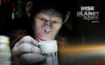 Movie - Rise Of The Planet Of The Apes Wallpapers and Backgrounds ID : 150441