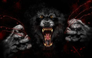 Dark - Werewolf Wallpapers and Backgrounds ID : 152011