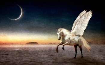 Fantasy - Pegasus Wallpapers and Backgrounds ID : 152081