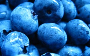 Preview Food - Blueberry Art