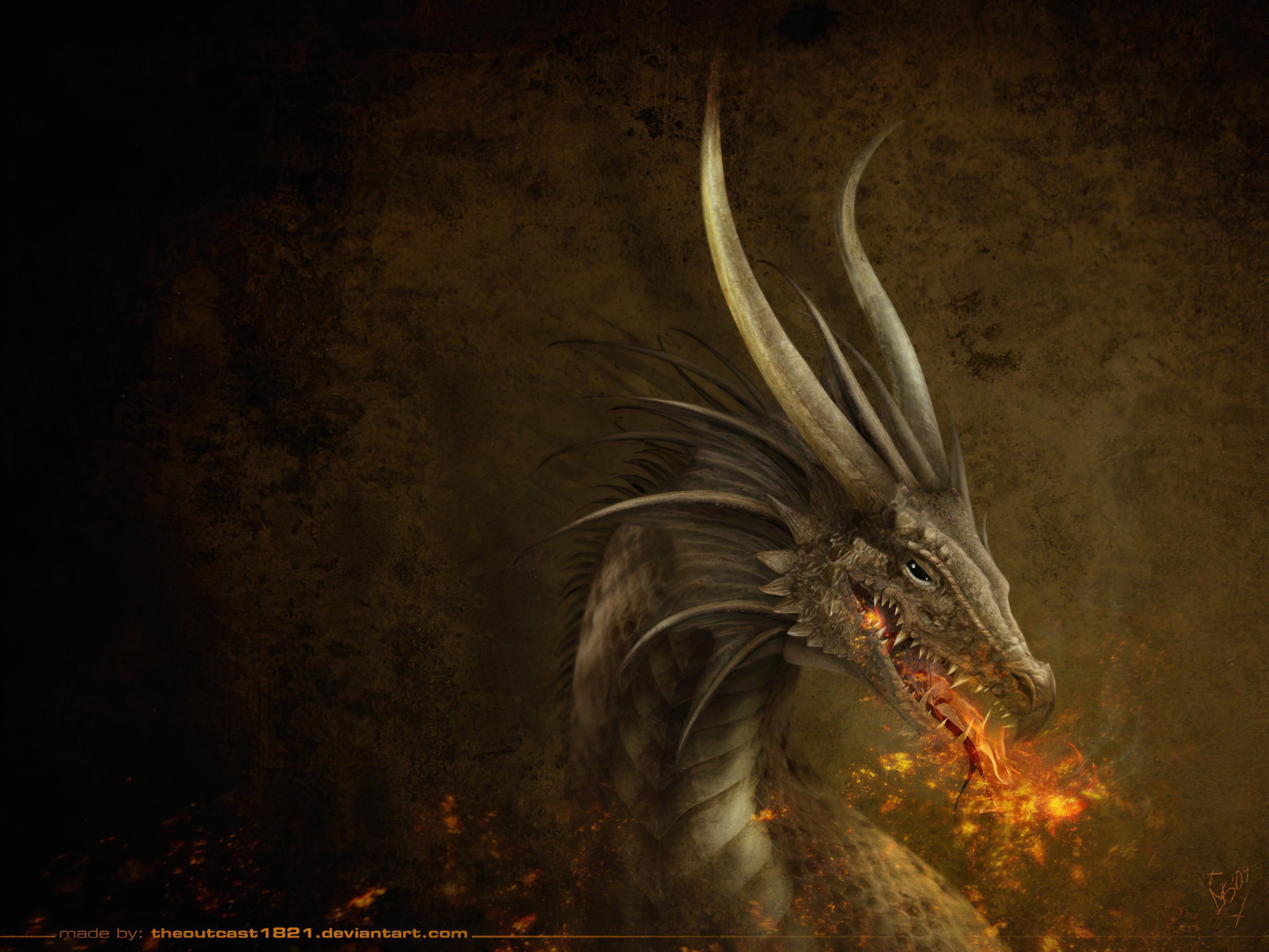 dragon wallpaper 1600x1200 - photo #2