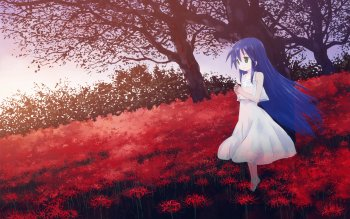 Anime - Lucky Star Wallpapers and Backgrounds ID : 160553