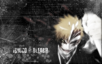 Anime - Bleach Wallpapers and Backgrounds ID : 17233