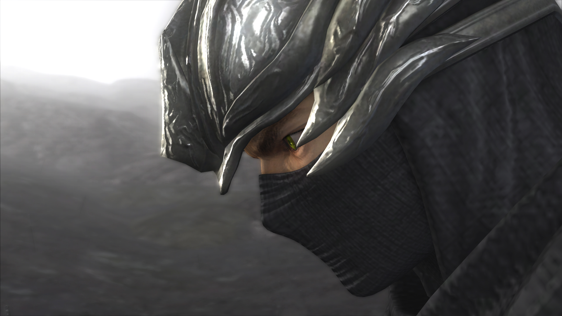 ninja gaiden wallpapers for desktop - photo #19