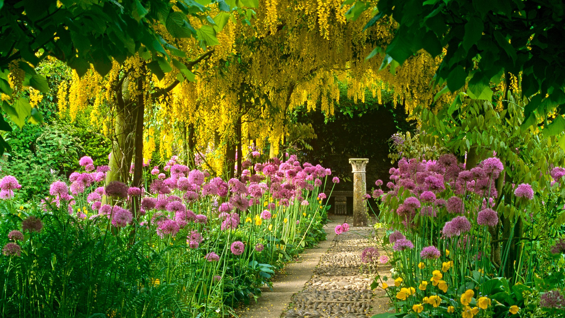 Hd wallpaper garden - Hd Wallpaper Garden 3