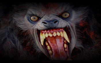 Dark - Werewolf Wallpapers and Backgrounds ID : 178643