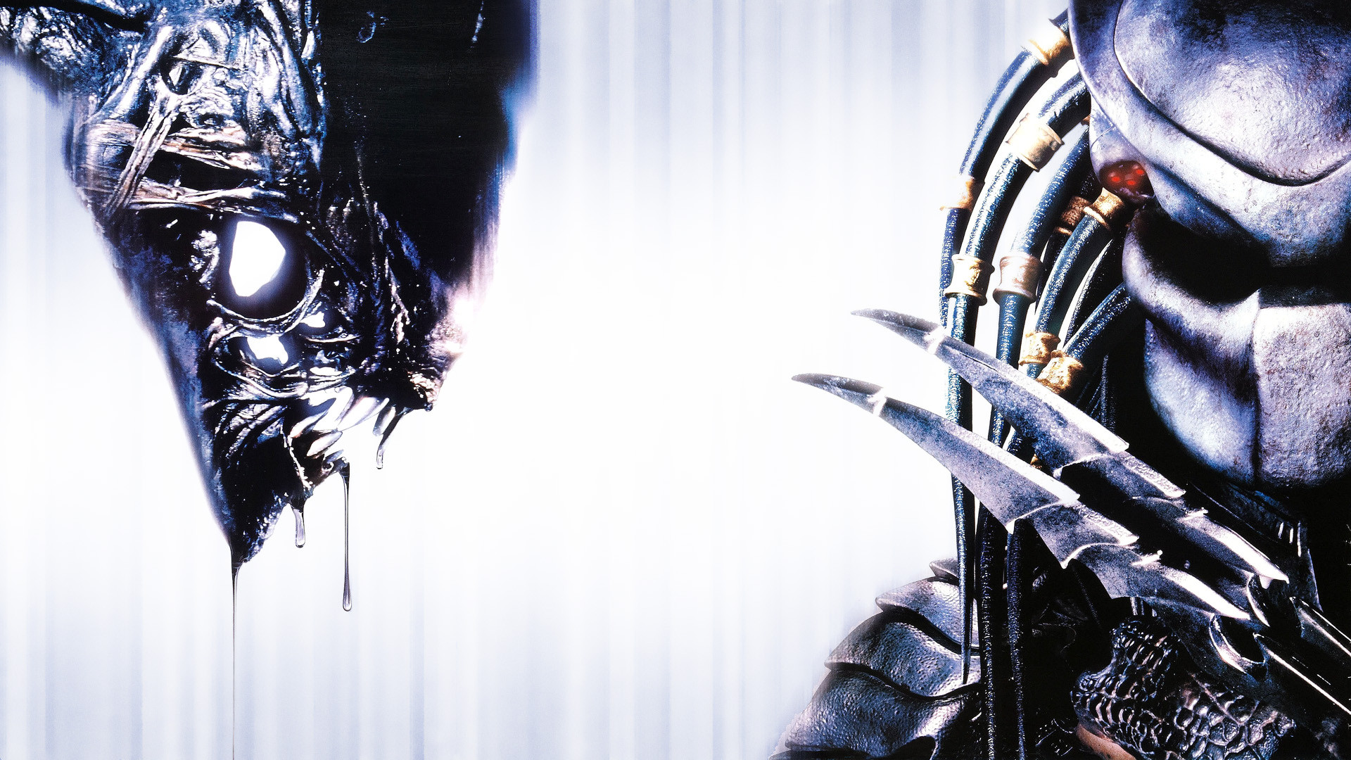 Movie - AVP  Alien Vs ...