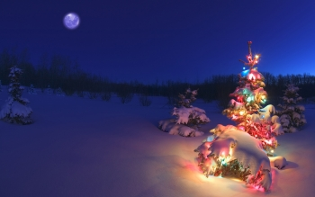 Holiday - Christmas Wallpapers and Backgrounds ID : 184561
