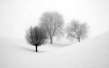 Earth - Winter Wallpapers and Backgrounds ID : 186271