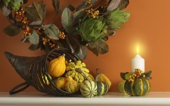 Holiday - Thanksgiving Wallpapers and Backgrounds ID : 191041