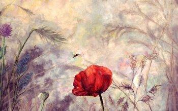 HD Wallpaper | Background ID:191241