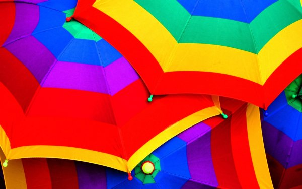 Photography Umbrella Colors Bright HD Wallpaper | Background Image