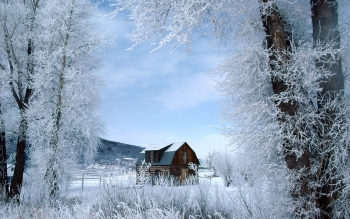 Fotografie - Winter Wallpapers and Backgrounds ID : 194111