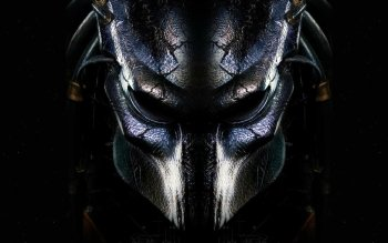 Sci Fi - Predator Wallpapers and Backgrounds ID : 196971
