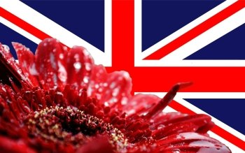 Diversen - Flag Of The United Kingdom Wallpapers and Backgrounds ID : 198353