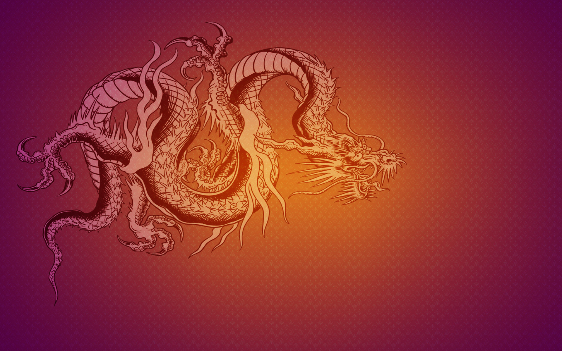 Dragon Full HD Wallpaper And Background Image