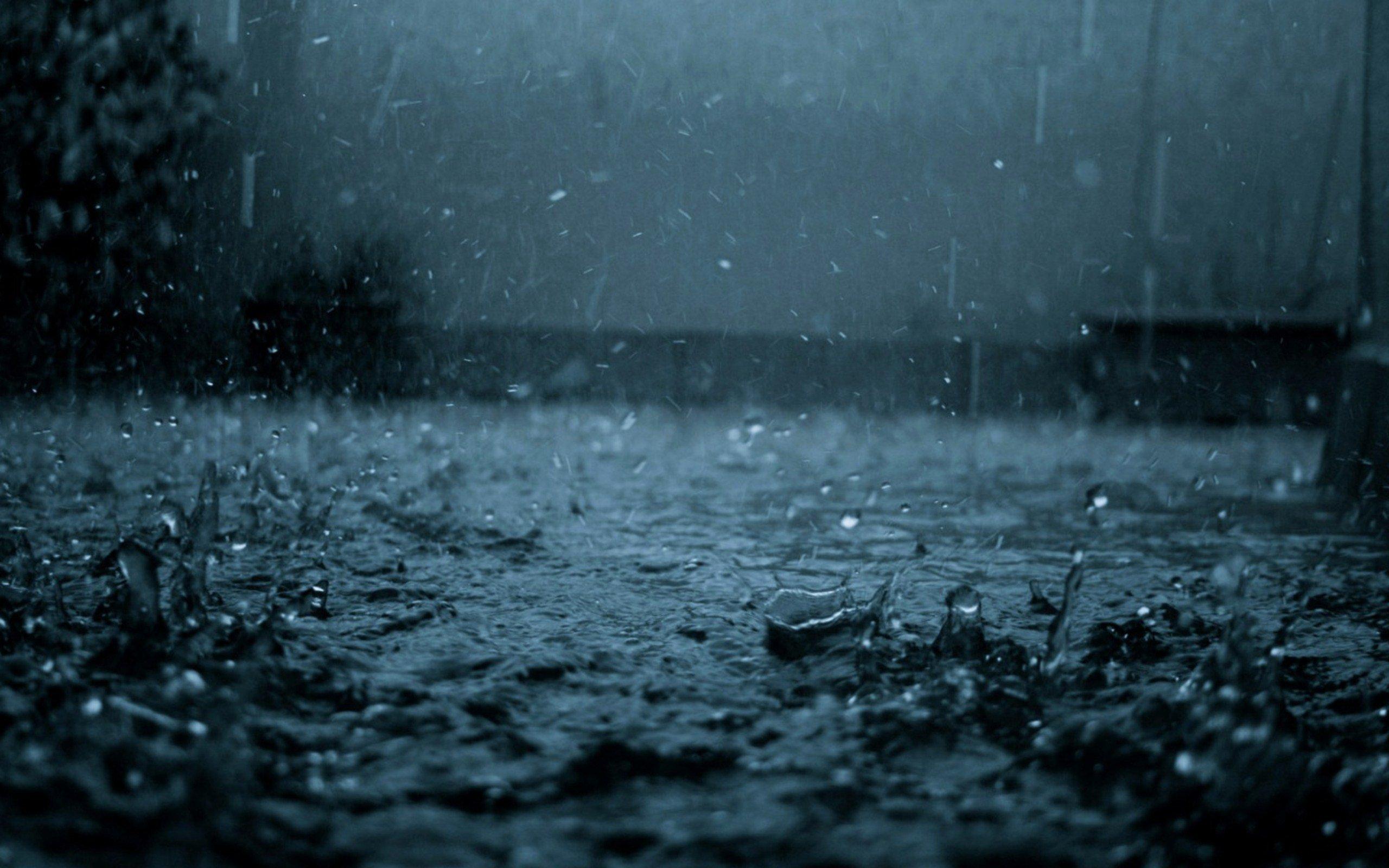 Rain Hd Wallpaper Background Image 2560x1600 Id 201751