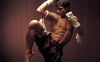 Sports - Martial Arts Wallpapers and Backgrounds ID : 205193